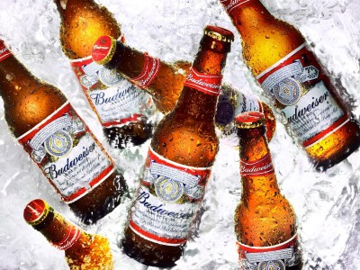 Bia Budweiser 5% - chai 330 ml